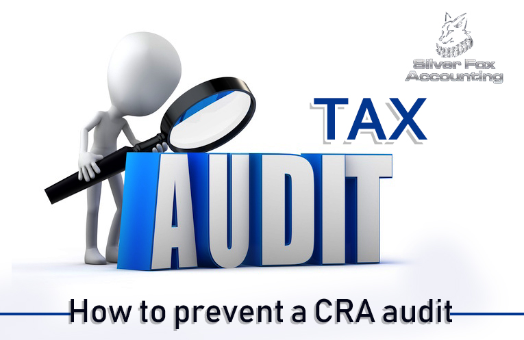 Want to Prevent a CRA Audit? Follow These Tips