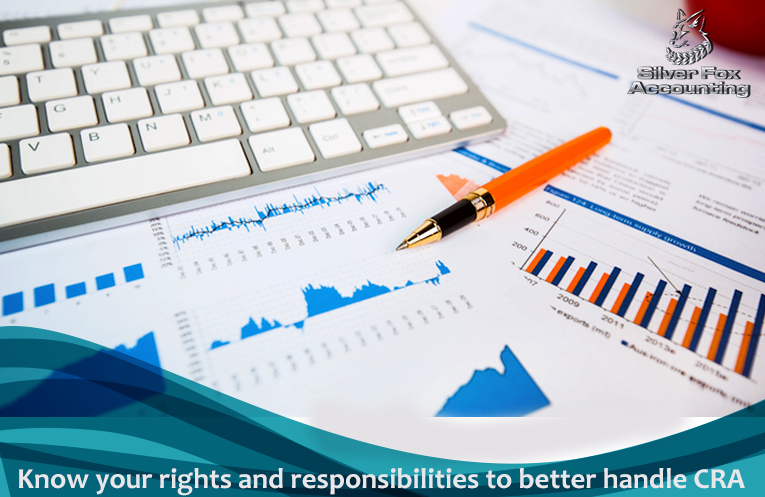 What Does The CRA Audit Process Entail For A Business?