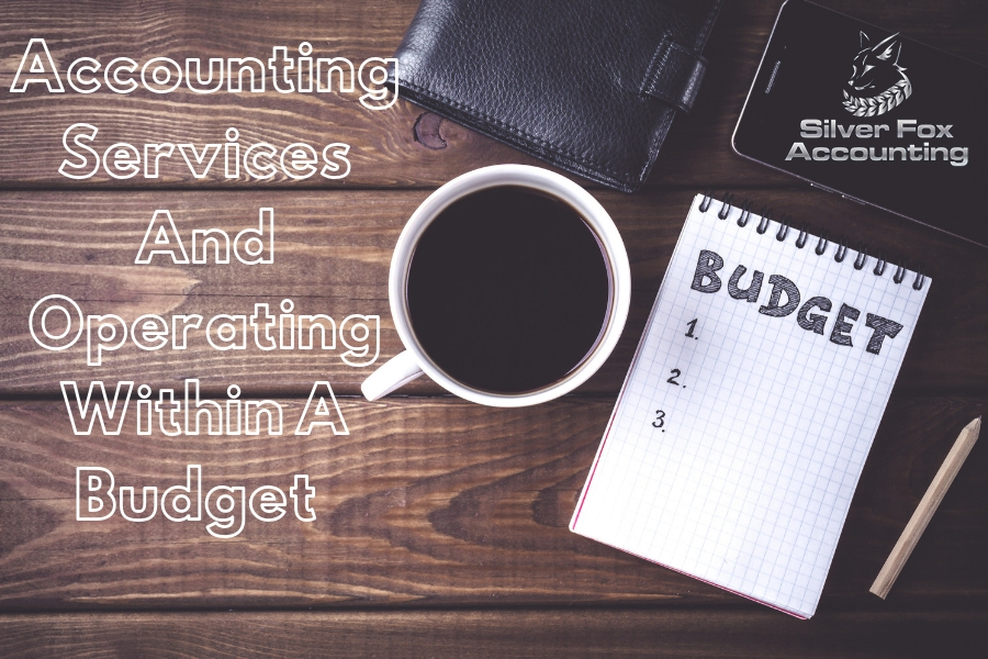 How Hiring Accounting Services Can Help Your Business Operate Within A Budget?