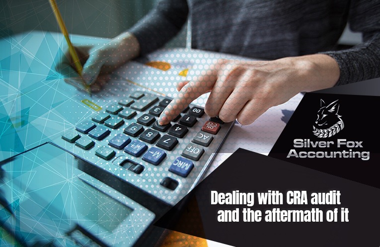 Can You Deal With The CRA Audit And The Steps Needed To Be Followed After Effectively?